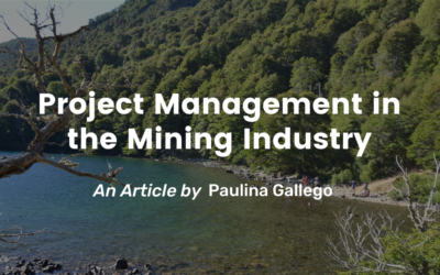 Project Management in the Mining Industry